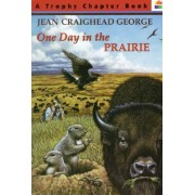 One Day in the Prairie by Jean Craighead George