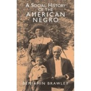 A Social History of the American Negro by Benjamin Griffith Brawley