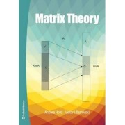 Matrix Theory by Anders Holst