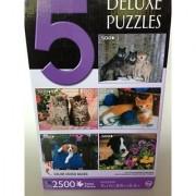 (5) Deluxe 500 Piece Puzzle Set