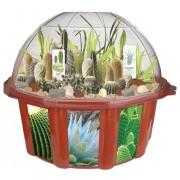 DuneCraft - Desert Biodome, Set per la coltivazione di piante tipiche delle zone desertiche