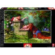 Educa - Puzzle de 1500 piezas (15580)