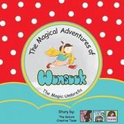 The Magical Adventures of Wonsook: The Magic Umbrella