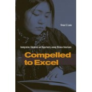 Compelled to Excel by Vivian S. Louie