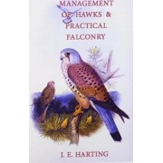 Hints on the Management of Hawks & Practical Falconry by James Edmund Harting