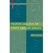 Fourier Analysis on Finite Abelian Groups by Bao Luong