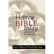 The Hebrew Bible Today by Steven L. McKenzie