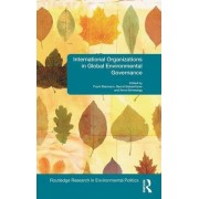 International Organizations in Global Environmental Governance by Frank Biermann