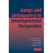 Gangs and Delinquency in Developmental Perspective by Terence P. Thornberry