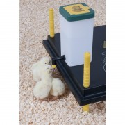 Chick Drinker 1L with Hinged Lid and Mounting Bracket