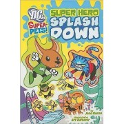 Super Hero Splash Down by Jane Mason