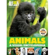 Animals: A Visual Encyclopedia by Planet Animal