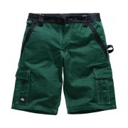 Dickies Industry 300 Pantalones cortos, verde, IN30050