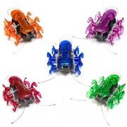 Hexbug Ant (Colors May Vary)