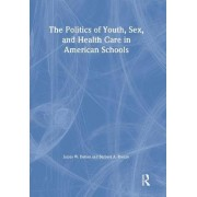 The Politics of Youth, Sex, and Health Care in American Schools by Marvin D. Feit