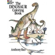 The Dinosaur Colouring Book by Anthony Rao