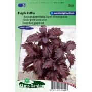 Basilicum Purple Ruffles (Ocimum Basilicum) zaad, kruidenzad