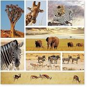Melissa & Doug 1 000-Piece Safari Shapshots Jigsaw Puzzle (2 x 2 feet)
