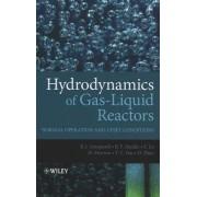 Hydrodynamics of Gas-Liquid Reactors by Barry Azzopardi