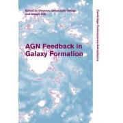 AGN Feedback in Galaxy Formation by Vincenzo Antonuccio-Delogu