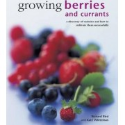 Growing Berries and Currants by Richard Bird