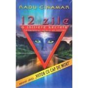 12 zile .O initiere secreta in taramul tainic al zeilor - Radu Cinamar