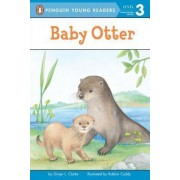 Baby Otter by Ginjer L Clarke