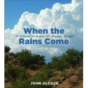 When the Rains Come by John Alcock