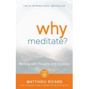 Why Meditate? [With CD (Audio)]