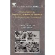 Developments in Palygorskite-Sepiolite Research: Volume 3 by Arieh Singer