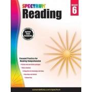 Spectrum Reading Workbook, Grade 6 by Spectrum