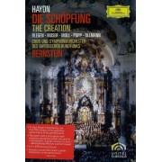 Leonard Bernstein - Haydn - The Creation (0044007345511) (1 DVD)