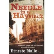 Needle in a Haystack by Ernesto Mallo