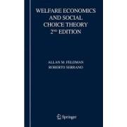 Welfare Economics and Social Choice Theory by Allan M. Feldman