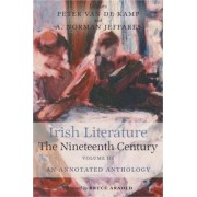 Irish Literature in the Nineteenth Century: v. 3 by A. Norman Jeffares