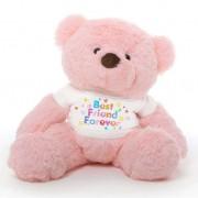 Pink 2 feet Fur Face Big Teddy Bear wearing a Best Friend Forever T-shirt