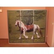 Skříň s potiskem - kůň
