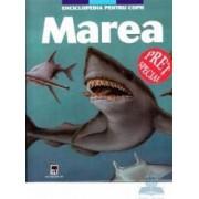 Marea - Enciclopedia pentru copii