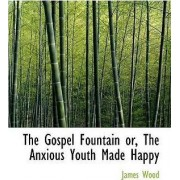 The Gospel Fountain Or, the Anxious Youth Made Happy by James Wood