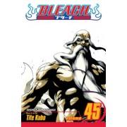 Bleach, Vol. 45 by Tite Kubo