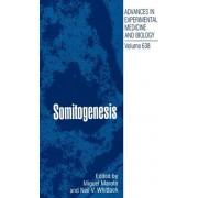 Somitogenesis by Miguel Maroto