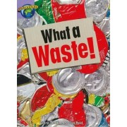 Fact World Stage 8: What a Waste! by Dee Reid