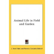 Animal Life in Field and Garden by Jean-Henri Fabre