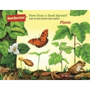 How Does a Seed Sprout? by Melissa Stewart