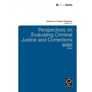 Perspectives on Evaluating Criminal Justice and Corrections by Erica Bowen