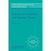 Surveys in Geometry and Number Theory by Nicholas Young