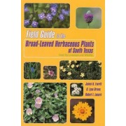 Field Guide to the Broad-leaved Herbaceous Plants of South Texas by James H. Everitt