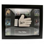 England Shilton Signed Glove (Framed)