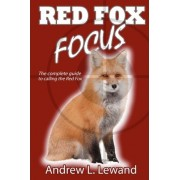 Red Fox Focus by Andrew L Lewand