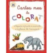 Cartea mea de colorat Legume Fructe Animale Mijloace de transport